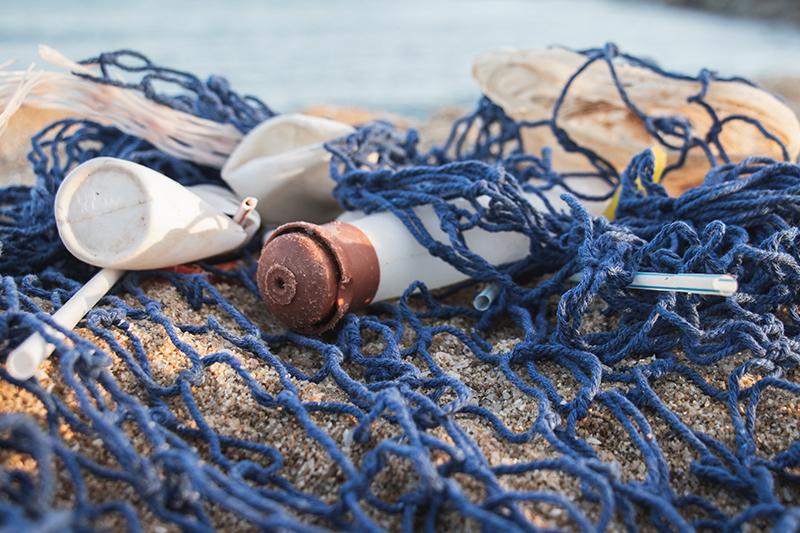 La situazione disastrosa dei nostri mari