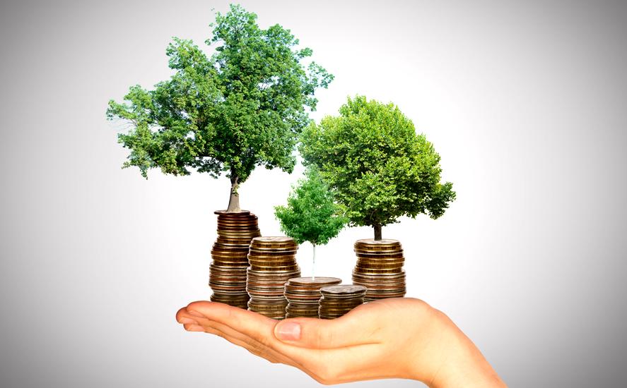 Piani di accumulo del capitale e Sostenibilità